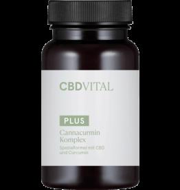 CBD Vital Cannacurmin complex (60 capsules)