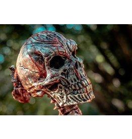 MonsterTargets 3D Demon Skull Bleeder Target