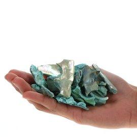SEAURCO Abalone Polished Offcuts - Green