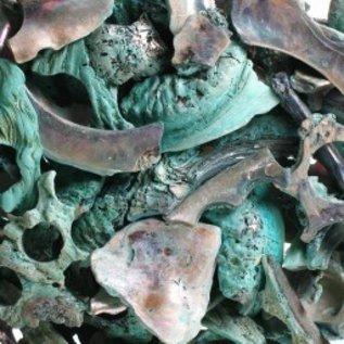 Abalone Polished Offcuts- Green
