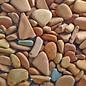 Assorted Terracotta
