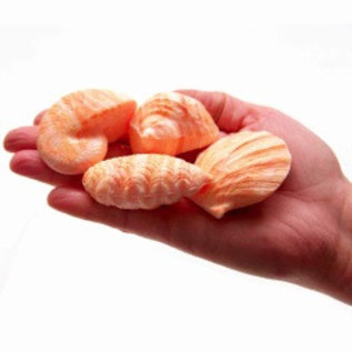 Shell Soap - Peach x3