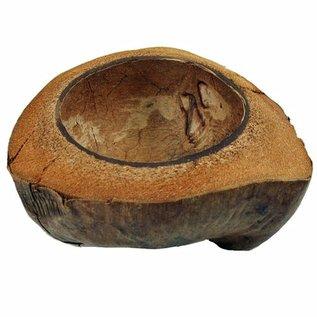 SEAURCO Short Cut Coconut Halves