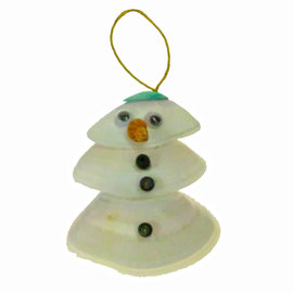 SEAURCO Snowman Craft Kit, Seashell shell Craft kit