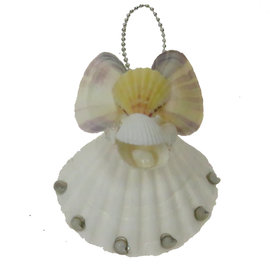 SEAURCO Large Angel Craft Kit, Seashell shell Craft kit