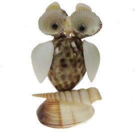 SEAURCO Owl Craft Kit, Seashell shell Craft kit