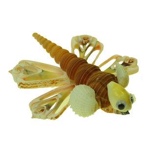 SEAURCO Dragonfly Craft Kit, Seashell shell Craft kit