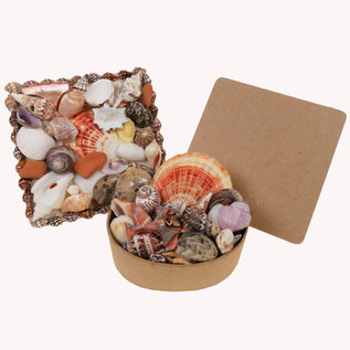 SEAURCO Assorted Seashell Plaque 10cm x 10cm