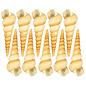SEAURCO Giants Screwshells 5-8cm -drilled x10