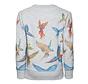 119-2200-13C-neck sweater parrots