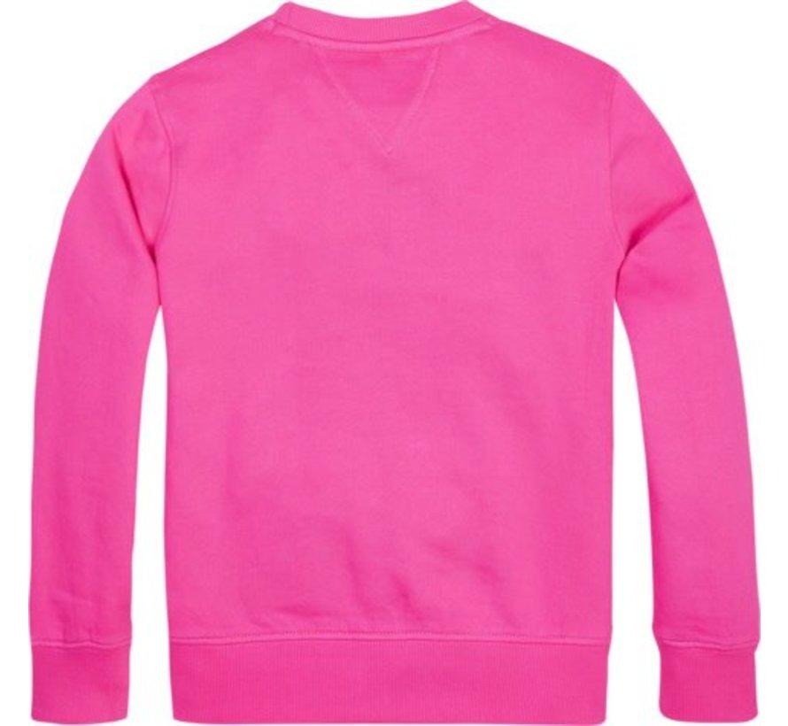 KB04657Tommy flag sweatshirt