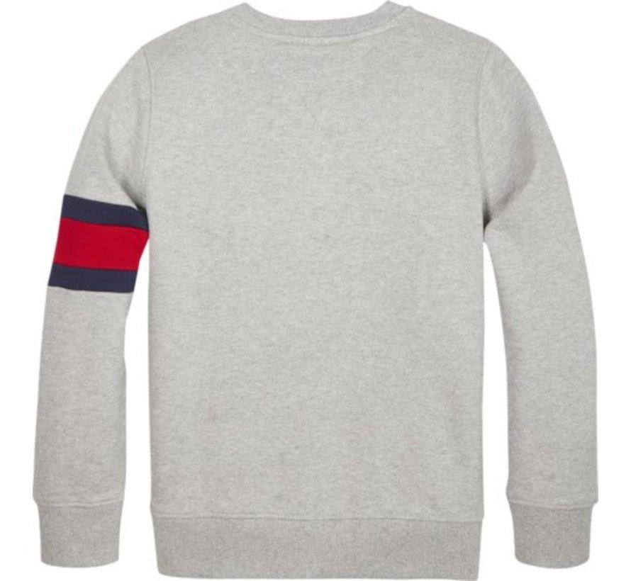 KB04658Cut sew flag sweatshirt