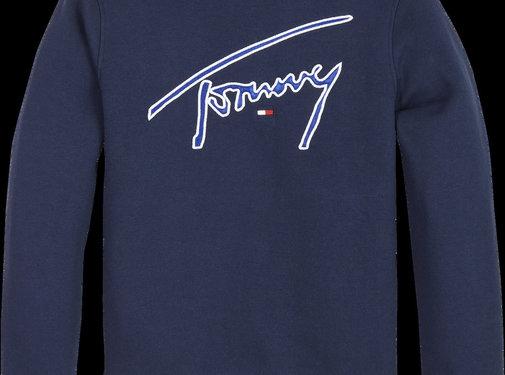 Tommy Hilfiger KB05070 essential signature sweatshirt
