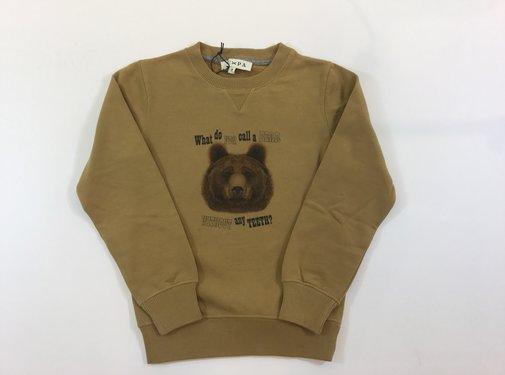 Scapa 9HBYDUNBEMUBCboys sweater dunn bummy bear
