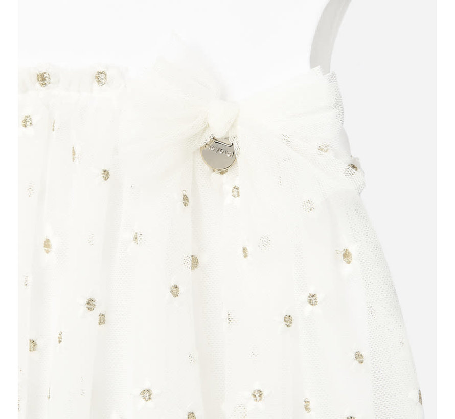 1927 embroided tulle dress