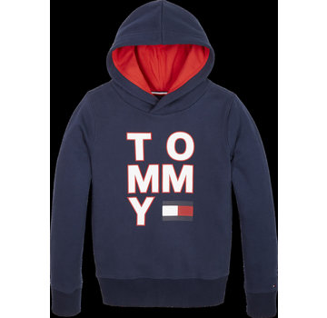 Tommy hilfiger pre KB05479 multi aw graphic hoodie