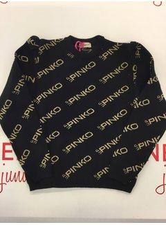 Pinko 025948 sweater