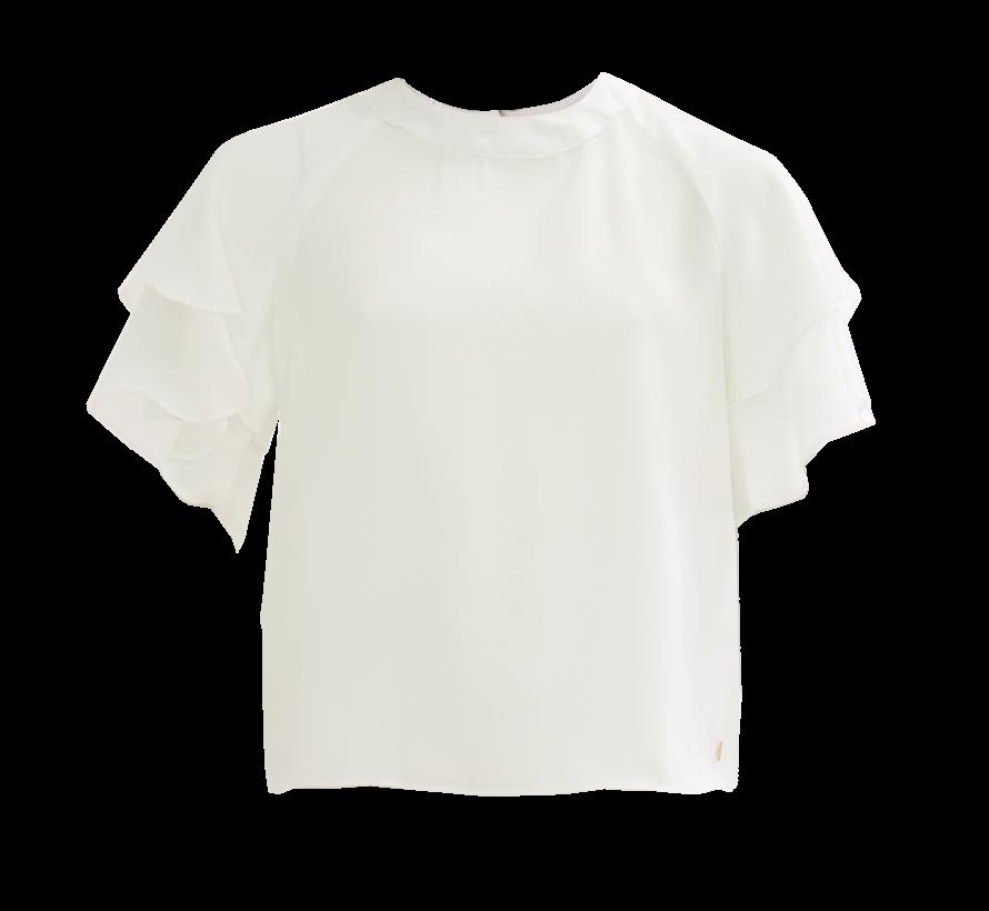 Oxalis blusa