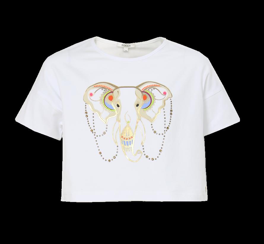 Sheba t-shirt