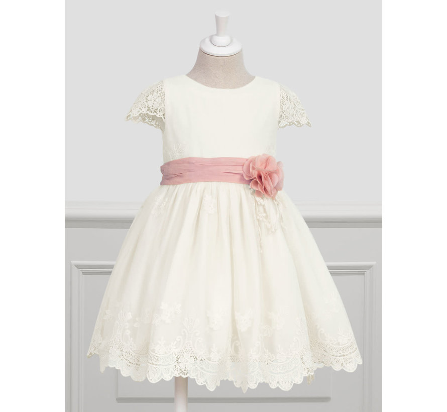 5006 embroidered tulle dress