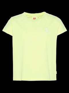 Ao76 121-1150-30 t-shirt pineapple