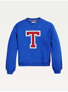 Tommy hilfiger pre KG05686 t applique sweatershirt