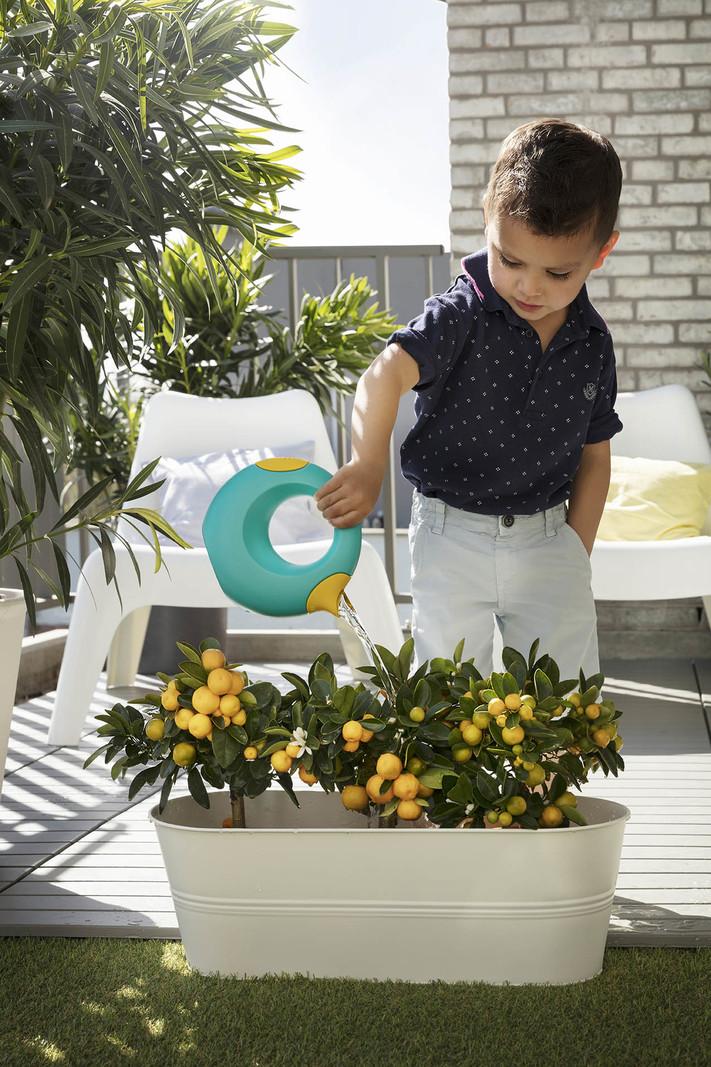 Quut Cana Speelgoed Gietertje - Tuin Bad Strand Speelgoed Meisje Jongen -  Cadeau 1 jaar   2 jaar   3 jaar   4 jaar   5 jaar - Geel Blauw - Small 0,5 liter