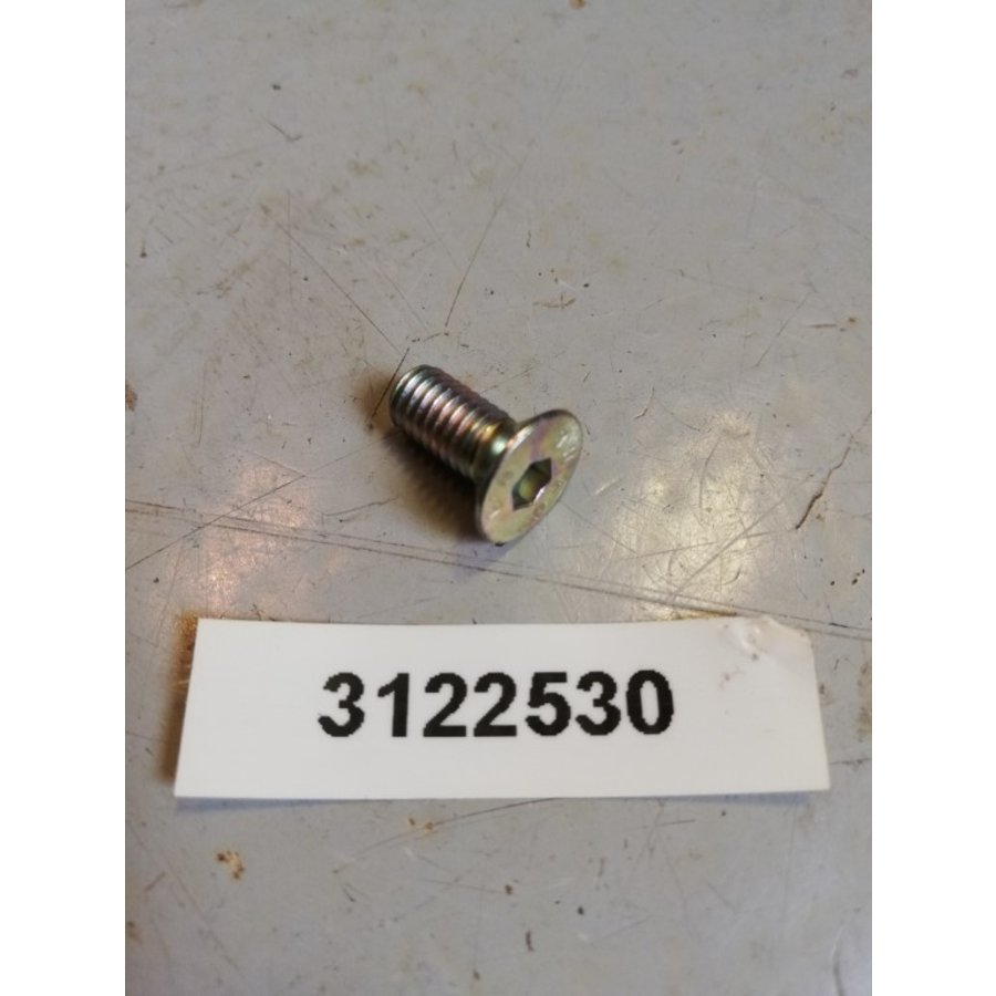 Bolt 10mm countersunk socket head 3122530 NOS DAF, Volvo 66, 300 series