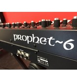 Dave Smith Dave Smith Prophet 6 (B-stock)