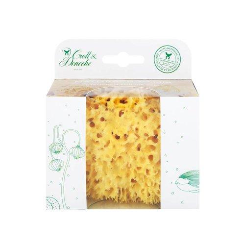 Natuur Spons in Eco cadeau verpakking - maat M - 11 cm - cadeau