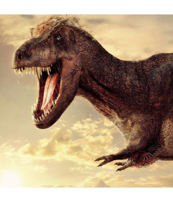 Naturalis-Originals Tyrannosaurus rex (T.rex) NATM01090916
