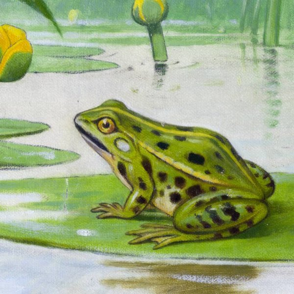 In pond and stream by M. A. Koekkoek NATM01021015