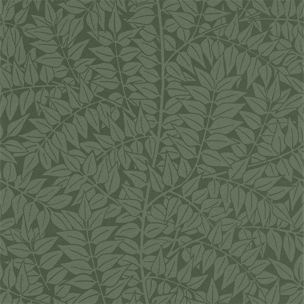 Branch Forest 210374