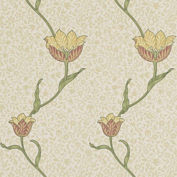 Garden Tulip Russet/Lichen DM6P-210392