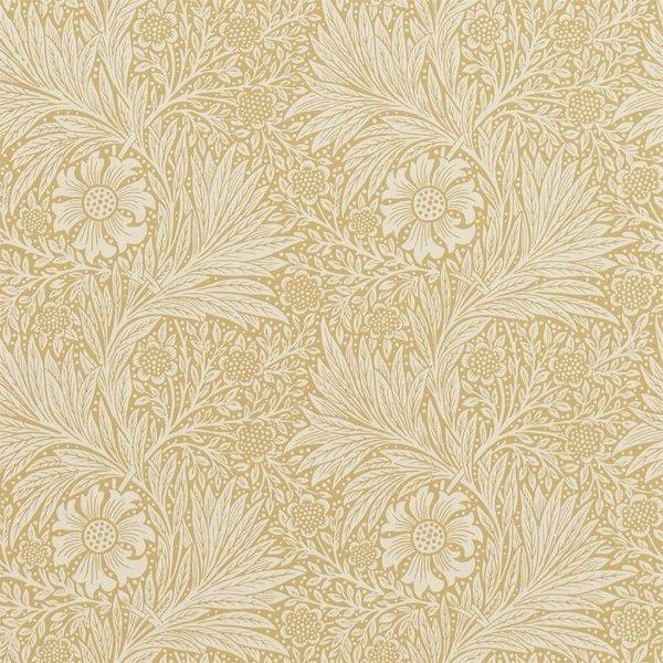 Marigold - Cowslip DM6P-210370