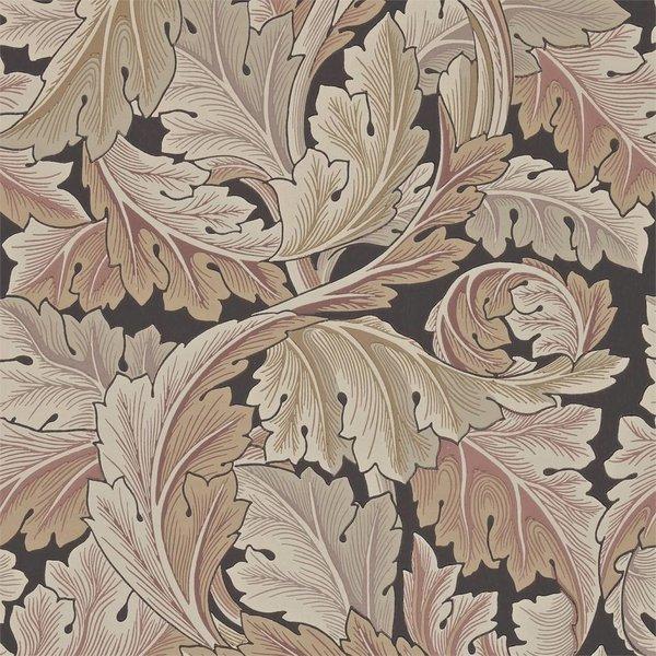 Acanthus Terracotta 212551