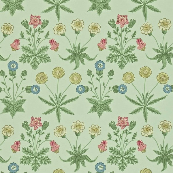 Daisy Pale Green/Rose 212559