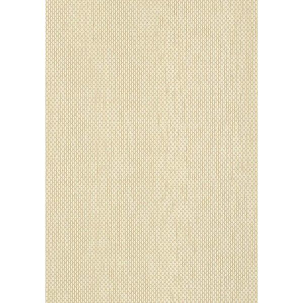 Grasscloth 4 Wicker Weave T72825