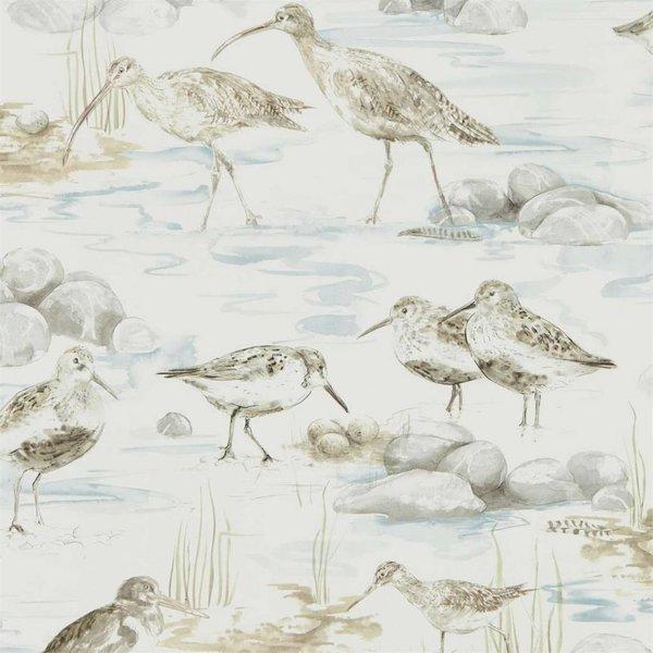 ESTUARY BIRDS 216492