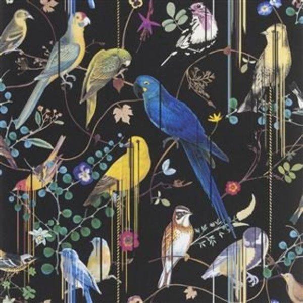 BIRDS SINFONIA CREPUSCULE PCL7017/01