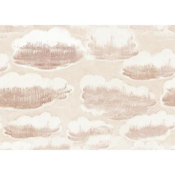 Clouds  23134