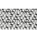 M.C Escher Cube 23151