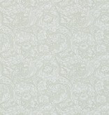 Morris-Co BACHELORS BUTTON 214738