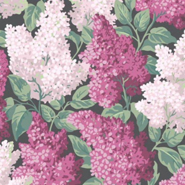 Lilac 115/1001