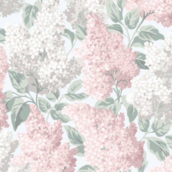 Lilac 115/1002