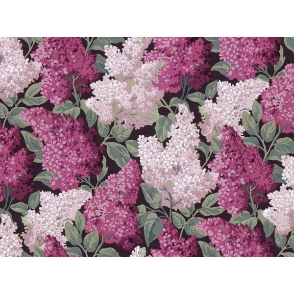 Lilac Grandiflora 115/15045