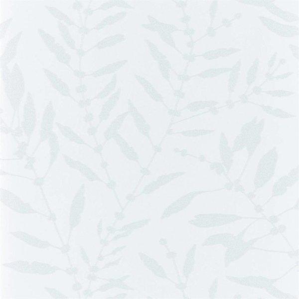 Chaconia Shimmer  Blush  111661