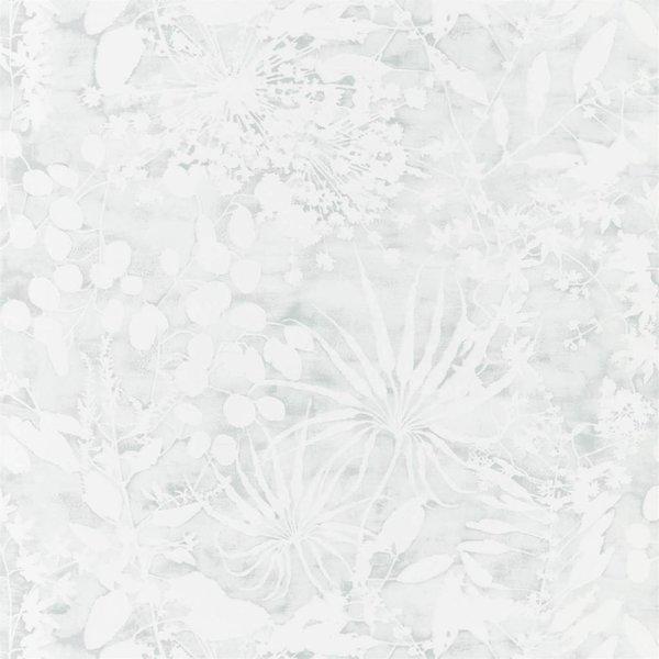 Coralline Mineral  111639