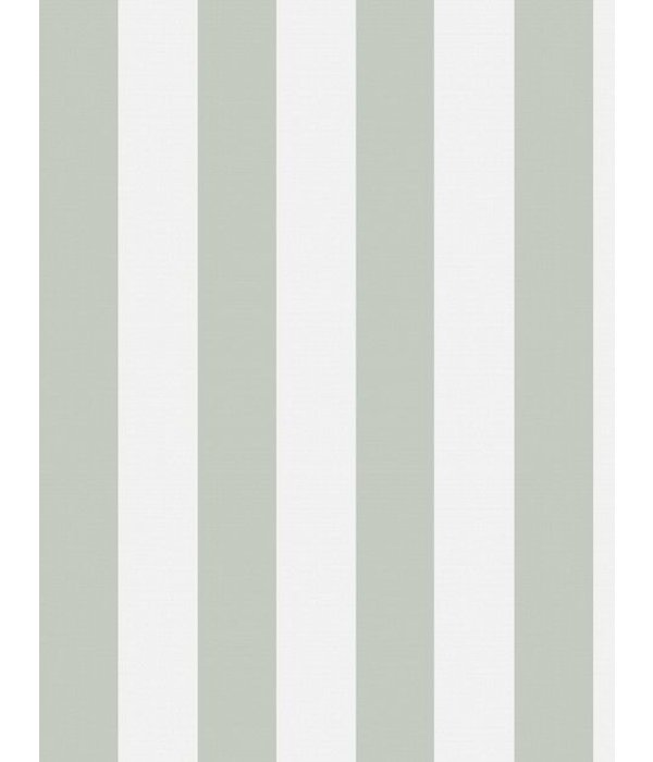 Cole-Son GLASTONBURY STRIPE 96/4020