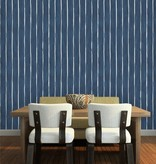 cole-and-son MARQUEE STRIPE 110/2011